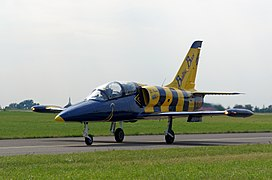 Baltic Bees - Radom Air Show - 20170826 6801 DxO.jpg