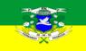 Bandeira de Fernando Pedroza.png