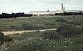 Barbette boats and saltmarsh. 1975 (37498309650).jpg
