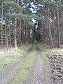 Barnbruch 04.04.2010 - panoramio - Christian-1983 (12).jpg
