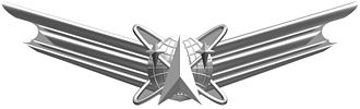 Badges of the United States Army - Image: Basic Space Badge