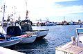 Bateaux de pêche de Trapani (4).jpg