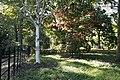 Batsford Arboretum in Autumn - geograph.org.uk - 1527766.jpg