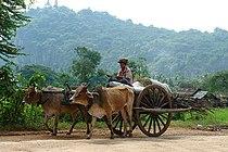Battambangcart.jpg