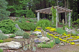 The rock garden with pergola.