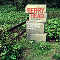 Berry Head National Nature Reserve.jpg