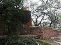 Bhuli Bhatyari Ka Mahal 20.jpg