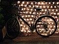 Bicycle at Night (4712246000).jpg