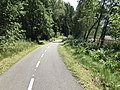 Bicycle path between Frymburk and Lipno nad Vltavou, near Lipno Reservoir.jpg