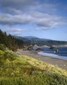 Big Sur, California LCCN2011630038.tif