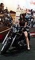 Bike Girls (65780275).jpeg