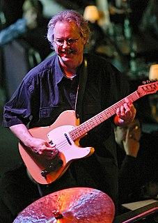 Bill Frisell American musician