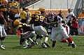 Bills @ Steelers MRR 0123.jpg