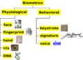 Biometrics traits classification.png
