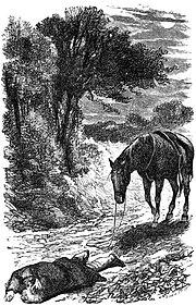 Black Beauty (1877), page 6