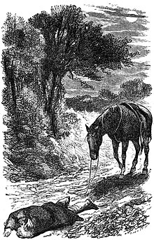 Black Beauty (1877), page 6.jpg
