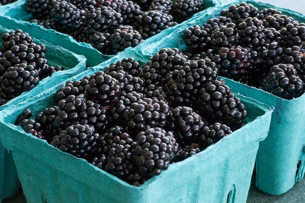 Blackberries (3821343779)