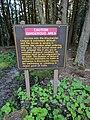 Blackwater Falls State Park WV 01.jpg