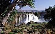 The Blue Nile Falls fed by Lake Tana near the city of Bahar Dar, Ethiopia forms the upstream of the Blue Nile. It is also known as Tis Issat Falls after the name of the nearby village.