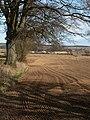 Bogside by Star - geograph.org.uk - 152585.jpg