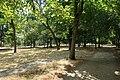 Bois de Boulogne, Neuilly-sur-Seine 1.jpg