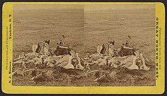 George K. Sanderson - Gen'l Custer's last stand, looking in the direction of ford and Indian village