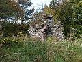 Bonkyll Castle 2.jpg