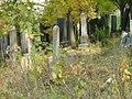 Boskovice, židovský hřbitov 03.jpg