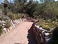 Boyce Thompson Arboretum, Superior, Arizona - panoramio (11).jpg