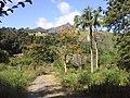Brasil Rural - panoramio (60).jpg