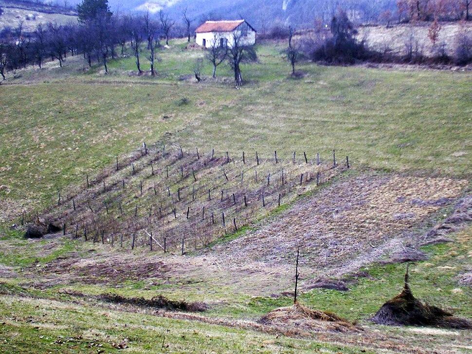 Brezovice - opština Valjevo - zapadna Srbija - panorama 7