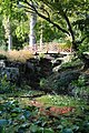Bridge and pond, Batsford Arboretum-geograph-3735444-by-Philip-Halling.jpg