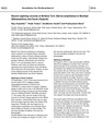 Bridled Tern Sterna anaethetus in Mumbai and Surat.pdf
