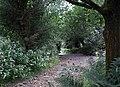 Bridleway to Irwell Vale (2) - geograph.org.uk - 954545.jpg