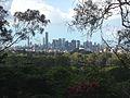 Brisbane skyline from Botanic Gardens at Mount Coot-tha.JPG
