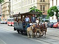 Brno, Brno Město, historická koňská tramvaj.jpg