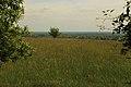 Brochterbeck Naturschutzgebiet Osterklee 16.JPG