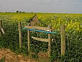 Broken Stile on footpath to Frith Farm - geograph.org.uk - 1297926.jpg