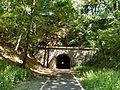 Bromskichen-tunnel-00.JPG
