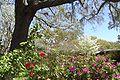 Brookgreen Gardens8.jpg