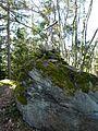 Buchaberg-Gipfelfelsen.jpg