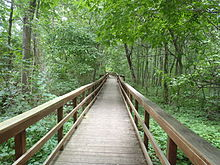 Burchfield Nature Center path.JPG