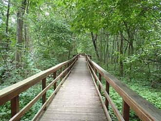 West Seneca, New York - Image: Burchfield Nature Center path