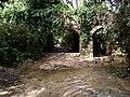 Buskett forest - panoramio.jpg