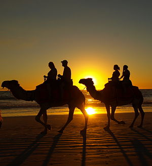 Broome, Western Australia - Tourists riding camels at Cable Beach in Broome at sunset.