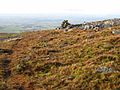 Cairn on the path up Cross Fell - geograph.org.uk - 664585.jpg