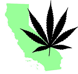 300px California marijuana template A Journey into the Emerald Triangle