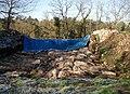 CampdeBierre-fouilles.jpg