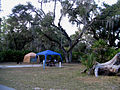 Campsite in Lake Kissimmee State Park.jpg