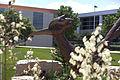 Campus Fall 2013 55 (9661923111).jpg
